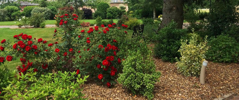 Copeaux plaquettes de bois pour massifs et jardins