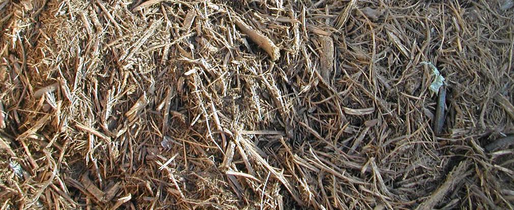 tri pour compost